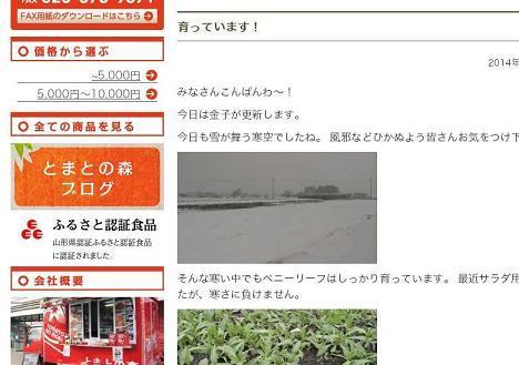 blogg.JPG