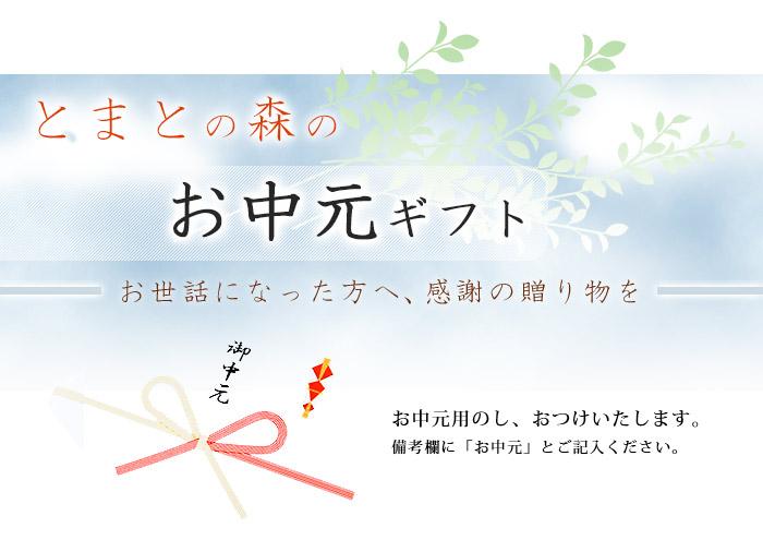 top_ochugen-h1.jpg