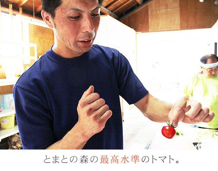 生食トマト