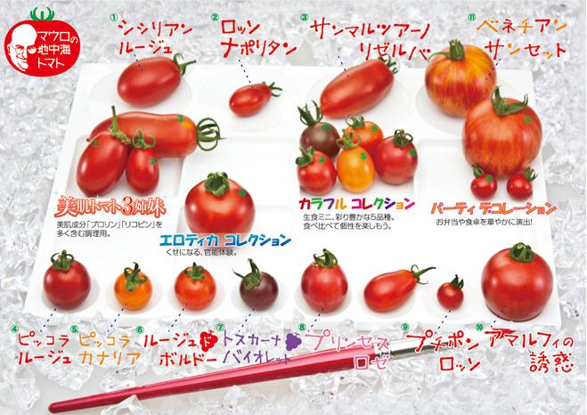 トマトの画像 p1_19